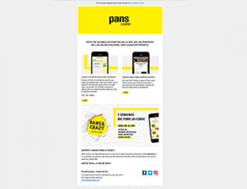 Newsletters Pans & Company